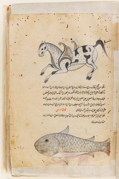 From the Harvard Art Museums' collections Manuscript of the 'Aja'ib al-makhluqat (Wonders of Creation) of Qazwini, with 253 paintings Medieval Manuscript, Medieval Art, Ink Illustrations, Illustration Art, Harvard Art Museum, Iranian Art, Book Of Hours, Naive Art, Old Art