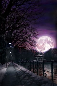 500px / Moonlight by Ekrem Kinis - Lindau - Germany