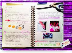 caderno de registros do professor