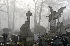 Cmentarz Rakowicki to najstarszy komunalny cmentarz Krakowa. Powstał na terenach wsi Prądnik Czerwony, przy drodze do wsi Rakowice. Pierwszy pogrzeb odbył się na nim w styczniu 1803 r., a pierwszą pochowaną tam osobą była 18-letnia Apolonia z Lubowieckich Bursikowa.