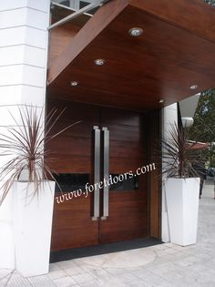 Modern entry door with stainless steel flat pulls