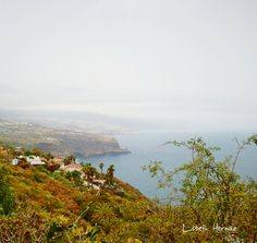 Por El Sauzal - Tenerife