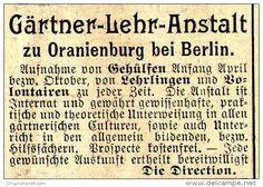 Original-Werbung/ Anzeige 1897 - GÄRTNER - LEHRANSTALT ORANIENBURG BEI BERLIN - ca. 45 x 35 mm