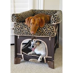 Arm's Reach Co-Sleeper Duplex Pet Bunk Bed - Large Size