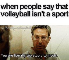 stupid. / volleyball humor