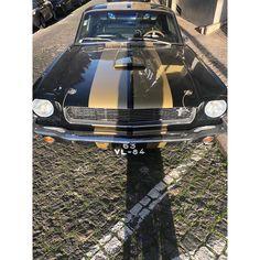 CELINE FLOAT sur Instagram: My favorite car ♠️💛♣️ #fordmustang Vintage Mustang, Ford Mustang, Celine, Vintage Cars, Bmw, Instagram, Ford Mustangs, Classic Cars, Retro Cars