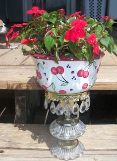 Cherry Colander glued on a broken lamp with red & white Impatient. It sparkles in the sunlight.
