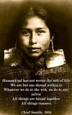 """Humankind has not woven the web of life. We are but one thread within it. Whatever we do to the web, we do to ourselves. All things are bound together. All things connect."" - Chief Seattle, 1854"