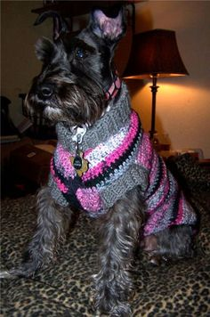 Dog Sweater - Crochet N More