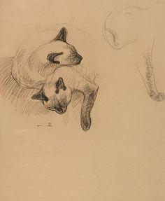 Google Image Result for http://2.bp.blogspot.com/-StcaZJnyc4s/T0deZ7hsWqI/AAAAAAAAI3o/5JUCtGtD9Xc/s1600/Sleeping+Siamese+Cats+steinlen.jpg