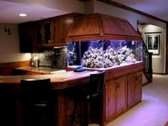 Wow!!! what a fish tank..