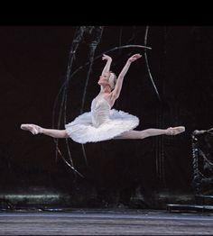 RB: Swan Lake (Sarah Lamb)  The Royal Ballet in Swan Lake, February to April, 2015