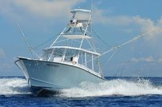 Miami Charter Boat offers tournaments, light tackle sport fishing in Miami Beach, Florida. Pike Fishing, Sport Fishing, Fishing Tips, Fishing Stuff, Deep Sea Fishing Boats, Offshore Fishing, Charter Boat, South Beach Miami, Fishing Charters
