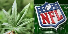 Will The NFL Be Forced To Change Its Current Cannabis Policy?...