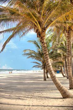 Kotu Beach by the Kombo Beach Hotel, The Gambia, West Africa