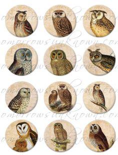 Handmade Cabochon Set of 12 - Owls