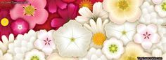 Beautiful-Pink-Flowers-facebook-timeline-cover