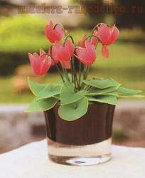 Master-class on creating flowers from nylon: Cyclamen