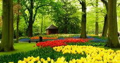 Memphis Botanic Garden, Memphis, TN.   Beautiful!