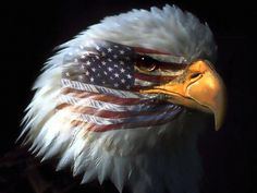 Free Patriotic Pictures | Free Powerpoint Template Content Slide Eagle with Flag