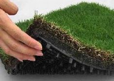 green roofs provide a natural cooling effect as well as excellent thermal insulation!