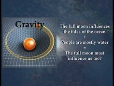 Does the Full Moon Change Human Behavior? Human Behavior, Full Moon, How To Find Out, Change, Stars, Youtube, Harvest Moon, Sterne, Youtubers