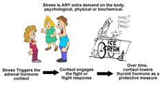 Cortisol (increases blood sugar, high blood pressure, poor digestion, poor immune function), also lowers thyroid hormone. When the body is pushed too hard, thyroid hormone and the metabolic rate goes down. This is the body's way of protecting itself, like putting on the emergency brakes in a car out of control.
