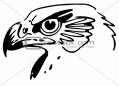 Image 4243423: Hawk's head from Crestock Stock Photos