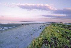 <3 Crane Beach MA   ...Beautiful beach... lots of dunes...admission fee
