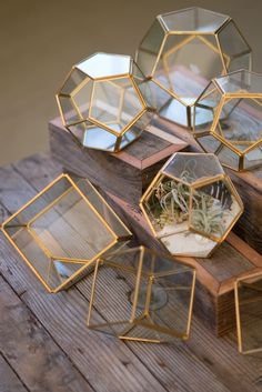"Geometric glass + polished brass terrarium. Choose from small or large Pentagon, small or large Geometric cube shaped terrarium. Large Pentagon: 7.5"" x 7.5"" Small Pentagon: 5.5"" 5.5"" Large Cube: 4.5"""