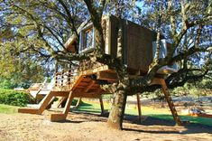 the-rooted-treehouse-urbanarbolismo, Estremadura