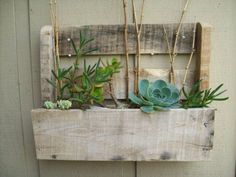 outside wall planter made from pallet