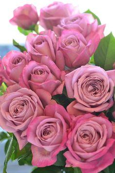 ภเгคк ค๓๏ Beautiful Pink Roses, Macro Flower, Clay Charms, Flower Wallpaper, Red Roses, Flower Power, Peonies, Wedding Flowers, Bouquet