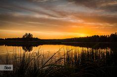 Orange moment 28.8.2015 by Jani Vienonen on 500px