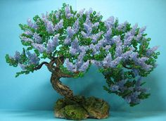 Деревья, Бонсаи. Обсуждение на LiveInternet - Российский Сервис Онлайн-Дневников