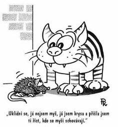 bonzácká-krysa Funny Memes, Jokes, Pavlova, Charlie Brown, Humor, Fictional Characters, Cartoons, Cartoon, Husky Jokes