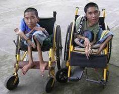 Agent orange boys orphanage:Monsanto Product