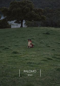 Palomo Spain Fall/Winter 2017 campaign - Fucking Young!