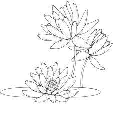 Resultado de imagen de plantillas flores pintar pared