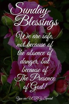 The presence of God, Sunday Blessings sunday sunday quotes sunday blessings sund… The presence of God, Sunday Blessings sunday sunday quotes sunday blessings sunday images sunday sayings Related Good Morning Quotes with Beautiful. Blessed Sunday Morning, Blessed Sunday Quotes, Sunday Prayer, Sunday Morning Quotes, Sunday Wishes, Good Morning Prayer, Morning Greetings Quotes, Morning Blessings, Good Morning Messages