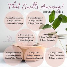 essential oil diffuser blends for winter essential oils for dog anxiety doterra Essential Oils Guide, Essential Oil Uses, Bergamot Essential Oil, Grapefruit Essential Oil, Mixing Essential Oils, Palo Santo Essential Oil, Aromatherapy Recipes, Aromatherapy Oils, Essential Oil Combinations