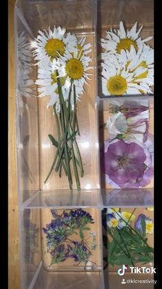 Flower Bouquet Diy, Diy Flowers, Press Flowers, Dried And Pressed Flowers, Pressed Flower Art, Diy Resin Crafts, Flower Aesthetic, Flower Frame, Flower Cards