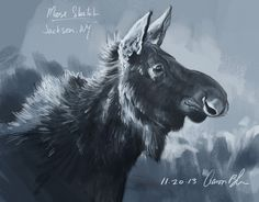 """Here's a new digital sketch done of a moose cow I observed in Wyoming last week. I love drawing and painting the ice age survivors. Photoshop Cs6 done on my Cintiq 24""""HD"""