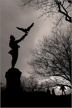 The Falconer in Central Park - great light and dark photo. Love.