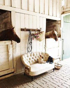 Farmhouse Touches — Dreamy White Lifestyle | Instagram