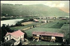 Buskerud fylke Hallingdal FLAA. Fint farvekort  Utg L.K.Ødegaard Nes  stpl. Flaa 1916.
