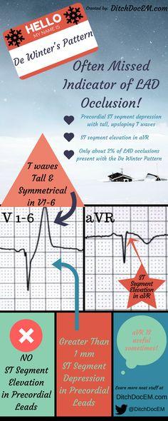 Flight Paramedic Certification - A Comprehensive Study Guide: Kyle ...