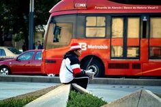 Descansando en la calle. / Resting in the street.