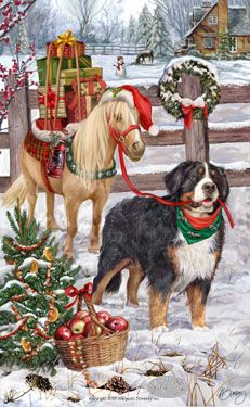 --Bernese Mountain Dog - Good Tidings & Cheer