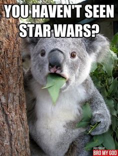 My face when someone has never seen star wars... To a T lol